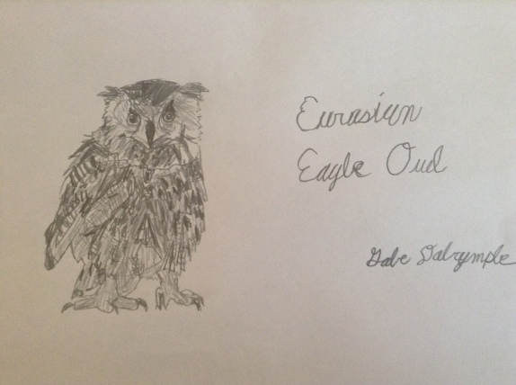 My Eurasian Eagle Owl